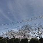 地震雲 No.3959