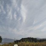 地震雲 No.55533