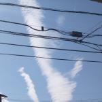 地震雲 No.55566